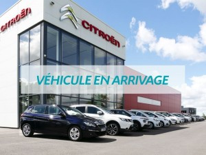 Véhicule PEUGEOT 1.5 BLUEHDI 130CH E6.C ACTIVE BUSINESS S&S EAT8